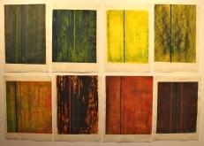 Studies In Colour - 2014